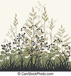 piante, erbe, fondo