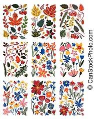 piante, estate, colorito, set, primavera, collezione, modelli, vettore, illustrazione, floreale, o