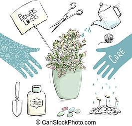 piante, giardinaggio, collezione, casa, attrezzi, o