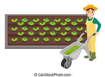 piante, isolato, giardino, organico, giardiniere, fondo, bianco, donna, carriola
