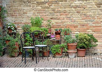 piante, legno, otri, due, sedie