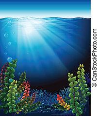 piante, mare, sotto
