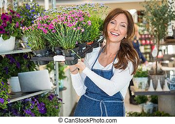 piante, pieno, cassa, portante, fiore, botanico, sorridente, negozio