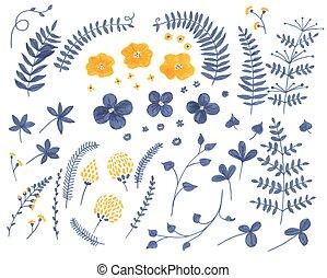piante, scarabocchiare, fiori, collezione