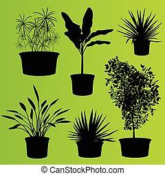 piante, set, casa, otri, isolato, vettore, fiore