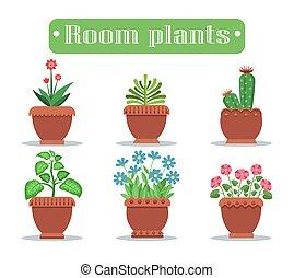 piante, set, stanza, fiore, otri, raccoglitori