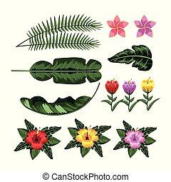 piante, tropicale, foglie, set, fiori