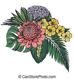 piante, tropicale, mano, fiori, vettore, palma, giungla, disegnato, foglie, composizione