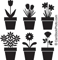 piante, vaso, set
