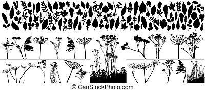 piante, vettore, mette foglie