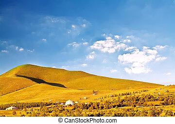 pianura, con, erba, sotto, cielo blu