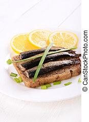 piastra, bianco, sprats, panino