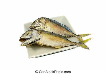 piastra, in umido, scombro, isolato, fondo, pesce bianco