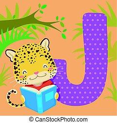 piastrella, alfabeto, giaguaro, leggere