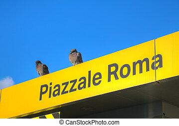 piazzale, 公共汽車, 停止, 威尼斯, 簽署, 水,  roma