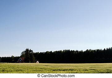 piccolo, iarda fattoria