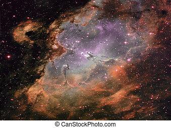 piccolo, parte, un, infinito, campo stella