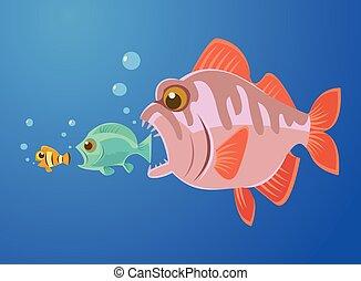 piccolo, pesci grandi, mangiare