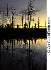 piccolo, stagno, secondo, tramonto