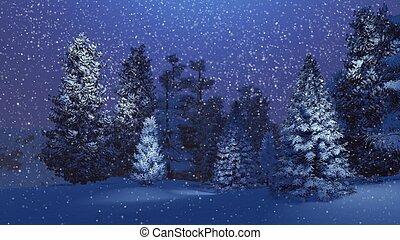 picea, bosque, noche, mágico, nevoso