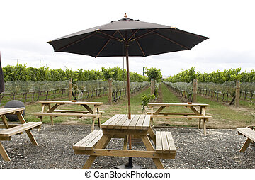 Picinic tables in vineyard