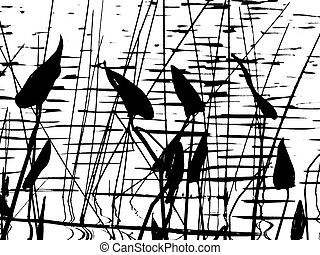 Pickerel weed background silhouette