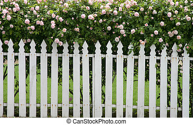 Picket Fence - A picket fence topped by flowers.