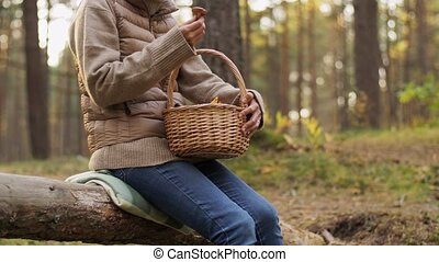 woman with mushrooms in basket in autumn forest - picking ...