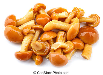 Pickled mushrooms are isolated on a white background. Pickled honey fungus.