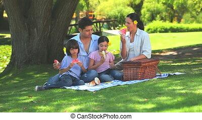 picknick, hebben, gezin