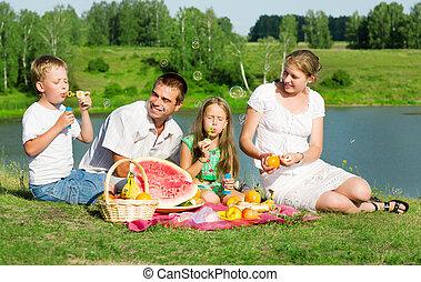 picknicken, familj