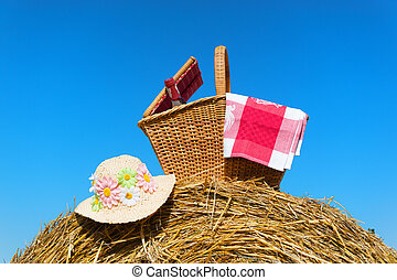 picknicken mand, in, zomer