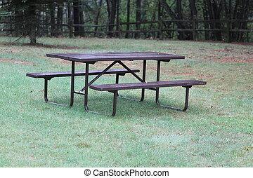 picknicken tisch, in, a, park