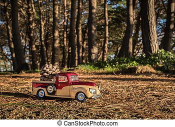 Pickup Pine Cone