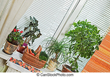 Picnic basket and flowerpots on window-sill