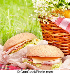 Picnic basket with apples bananas and sandwiches