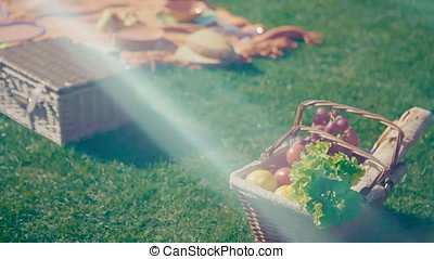 Picnic basket with vegetarian couple in park outdoor
