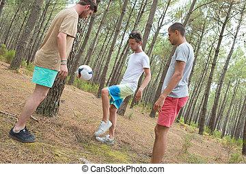 picnic, football, pranzo, attivo, amici, gioco