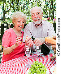 Picnic for Senior Couple