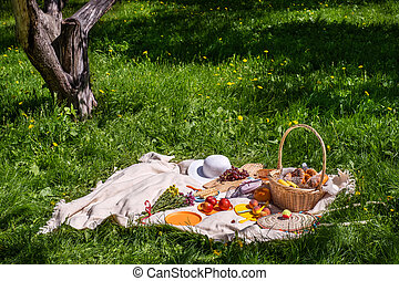 a blanket and food for a picnic in summer Park