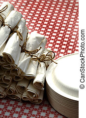 Picnic Place Setting Table Napkins and Meal