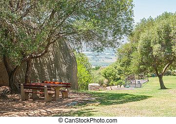 Picnic spot at the Afrikaans Language Monument