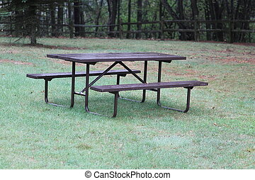 Picnic Table in a park