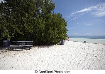 picnic table on beach florida keys - picnic table on coco...