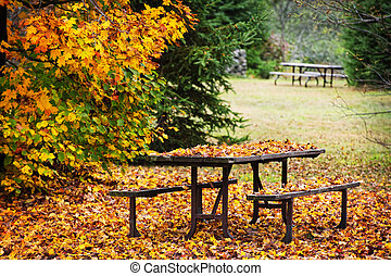 Picnic table with autumn leaves - Picnic table covered with ...