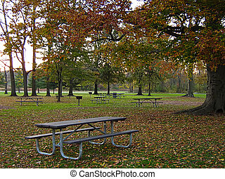 Picnic Tables In Autumn