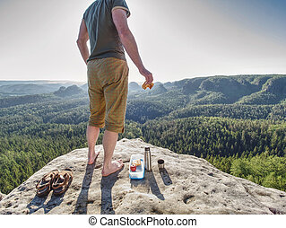 Picnic the wilderness. Ham toasts and apple in box for ...