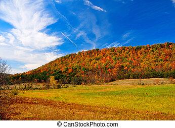 pico, follaje, otoño