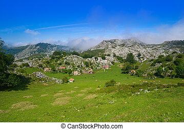Picos de Europa in Asturias of Spain - Picos de Europa...