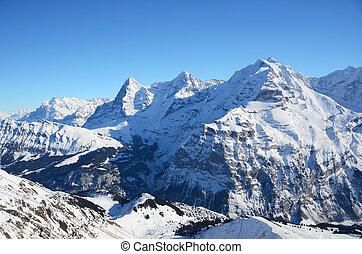 picos montanha, jungfrau, famosos, moench, suíço, eiger